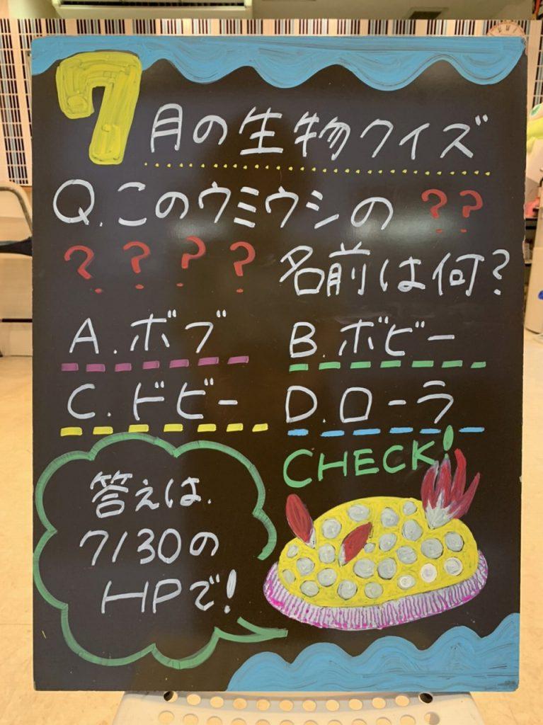 ☆クイズの正解発表③☆