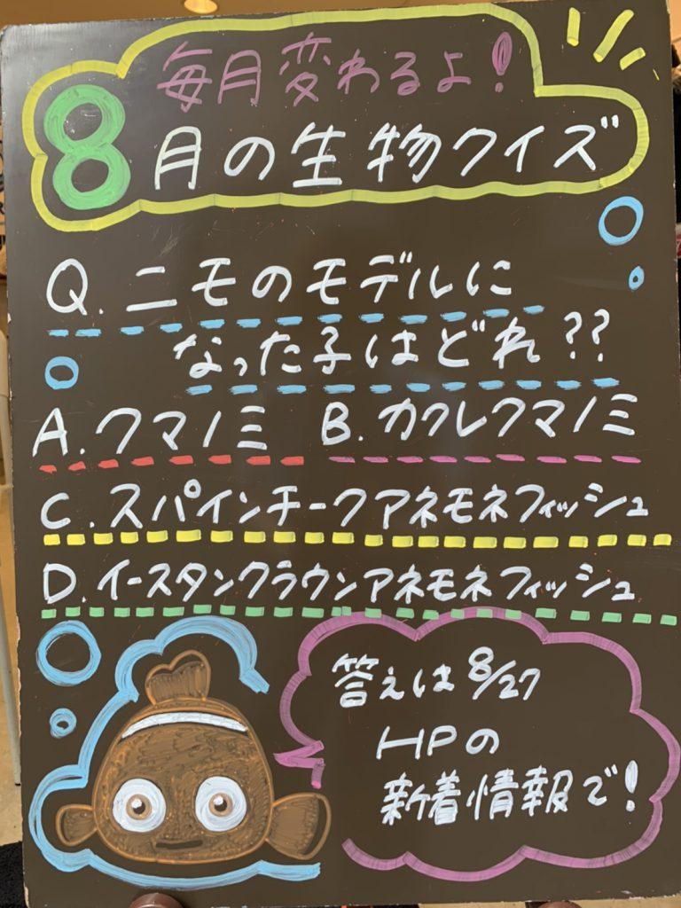 ☆クイズの正解発表④☆