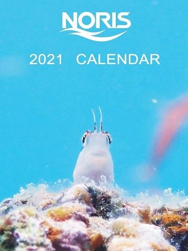 ★2021年 ノリスカレンダー★
